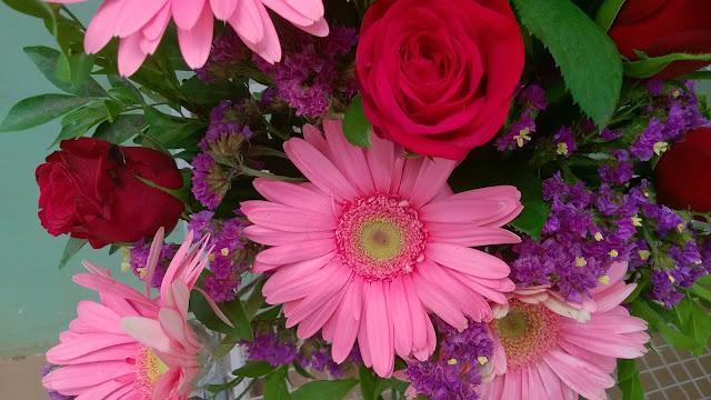 Flowers, Pink, Gerbera