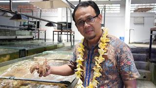 Harus Miliki Manfaat Ekonomi - Budidaya Koral