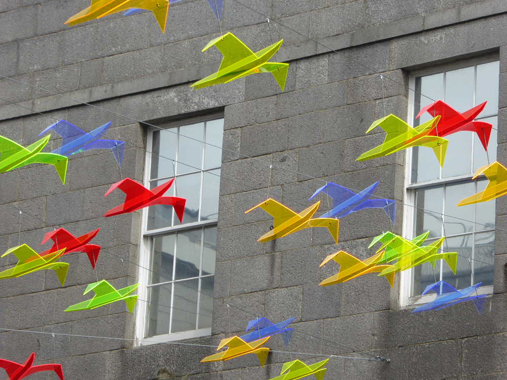 Perspex seagulls in flights