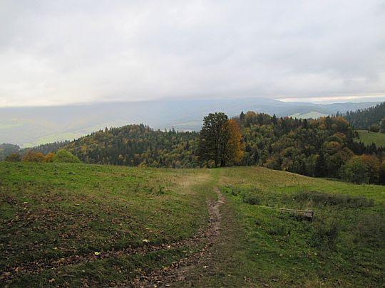 Polana pod Wysoką.