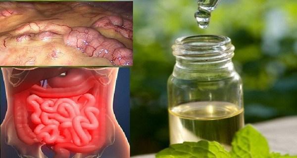 Remova todas as toxinas do corpo em 3 dias! Um método que previne o câncer, remove a gordura e excesso de água!