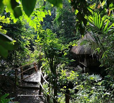 Unik, Berkunjung Ke Kampung Primitif Banyuwangi