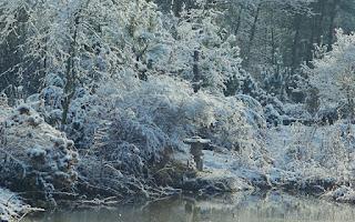 http://fotobabij.blogspot.com/2015/12/latarnia-japonska-zimowo.html