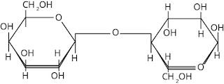 rumus struktur laktosa