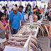 """Inédita Feria de Emprendedores """"Expo - Familias"""" se toma la playa de Iloca"""