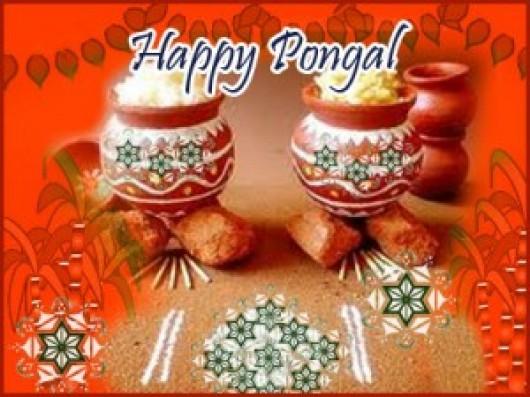 Festivals All Over The World Happy Makara Sankranthi