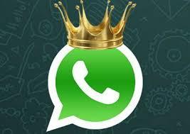 https://chat.whatsapp.com/6hNv0LzLbPC8fbkqxqKkAp
