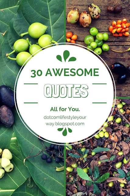 30 Awesome Quotes to inspire your blogging success