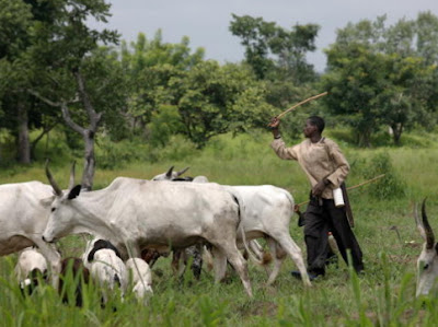 fulani kidnaps catholic priest