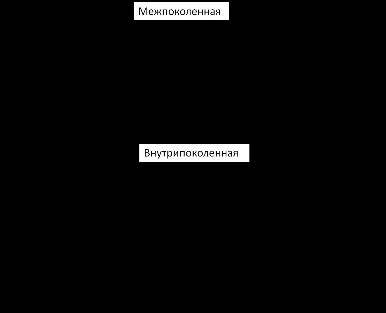 Виды социальной мобильности схема фото 746