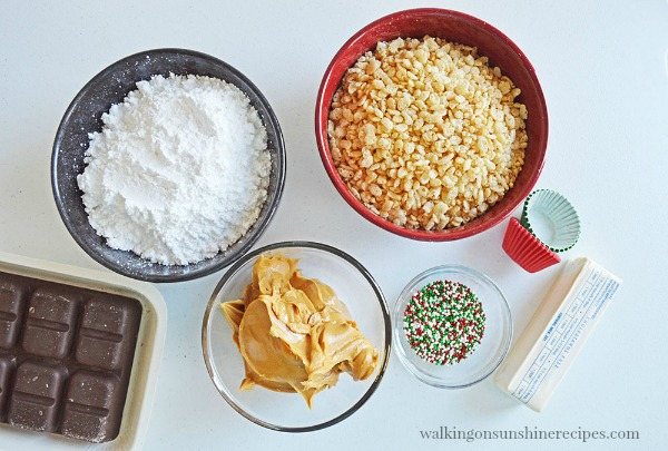 Ingredients for Chocolate Peanut Butter Balls from Walking on Sunshine Recipes