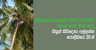 Team of 25 police officers deployed ...   to apprehend 4 students who plucked 30 coconuts from estate of high rung lady politico!