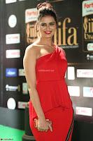Meenakshi Dixit in Red One Shoulder Red Zipped up gown at IIFA Utsavam Award 66.JPG