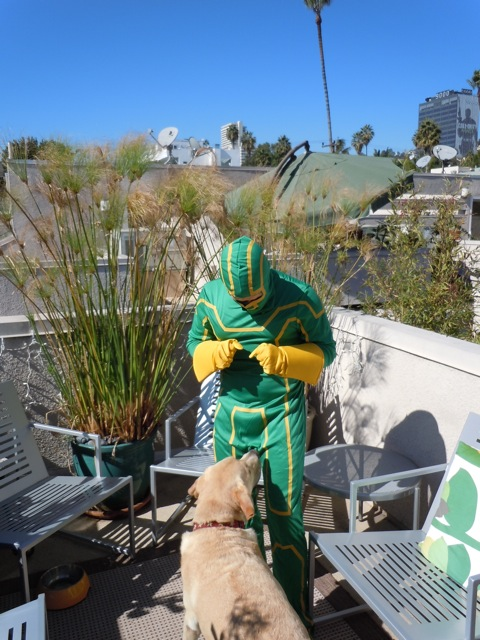 Kick-Ass Halloween costume