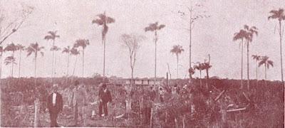 """Visita do presidente do Estado, Washington Luiz, ao Ariri, em 1921. Foto: Revista """"A Vida Moderna"""", nº 41, de 29-9-1921)"""