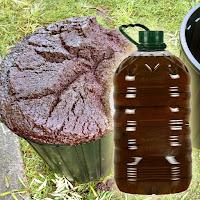 Pirina ve pirinadan üretilmiş zeytinyağı