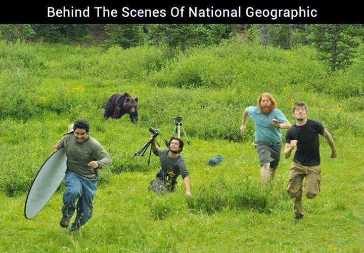 funny national geographic behind the scenes