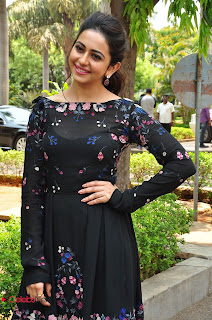 Actress Rakul Preet Singh Pictures in Short Dress at Sarrainodu Press Meet  0042