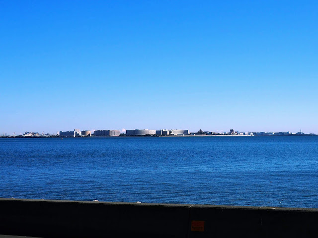 若洲海浜公園 サイクリングロード ディズニーランド