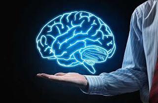 otak manusia digunakan 10%