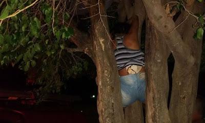 Por amor louco mulher fica presa é árvore