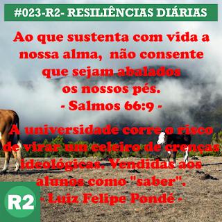 023-R2- RESILIÊNCIA 2