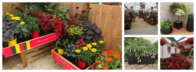Retail display and pot planter ideas