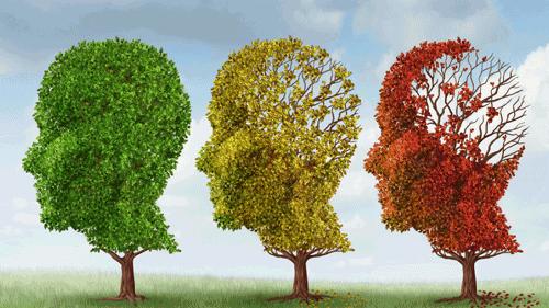 batrani-cu-Alzheimer