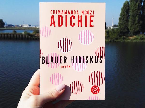 """[Rezension] """"Blauer Hibiskus"""" - Chimamanda Ngozi Adichie"""