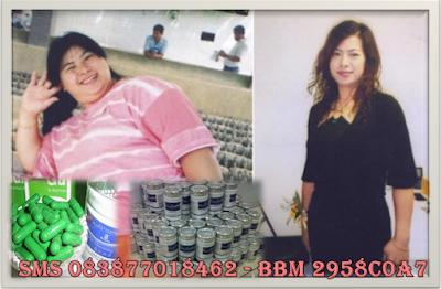 Obat Penurun Berat Badan 10kg Wsc Biolo