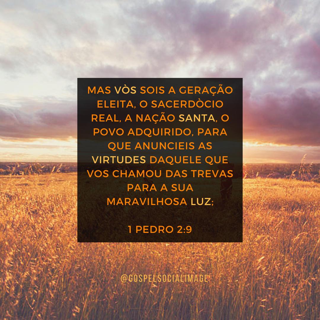 Imagem com Mensagem de Deus para Hoje - 1 Pedro 2.9