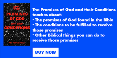 Promises of God book