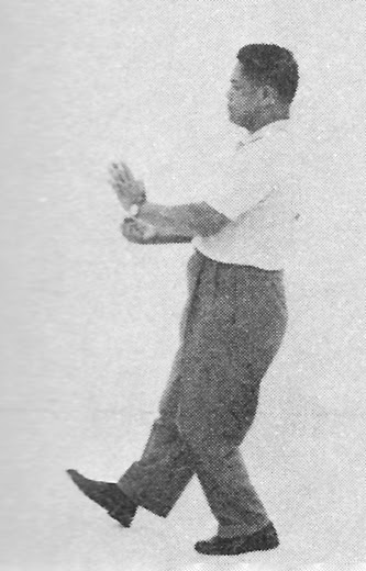 Tai Chi Chuan (Square Form) 33. Step Back, Parry And Punch