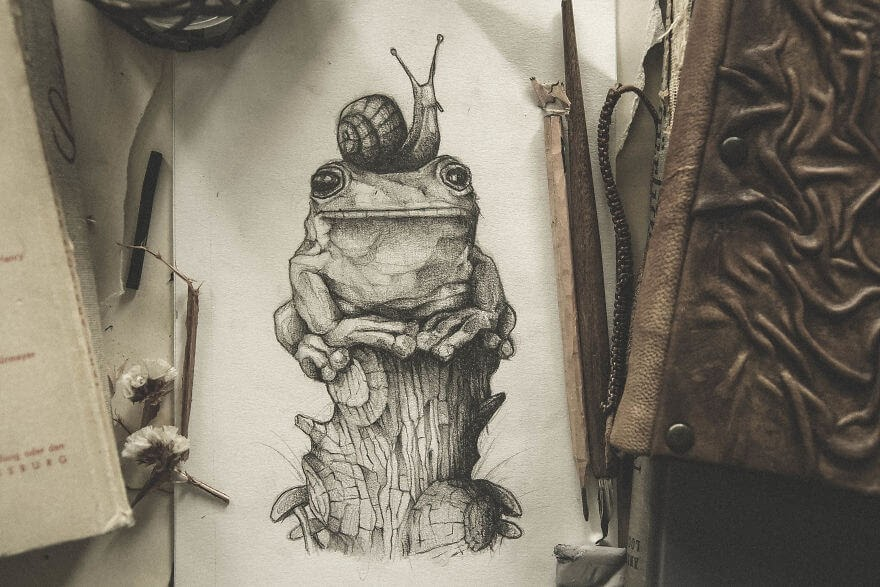 01-The-Frog-and-Snail-Mike-Koubou-Stylized-Sketchbook-Animal-Pencil-Drawings-www-designstack-co