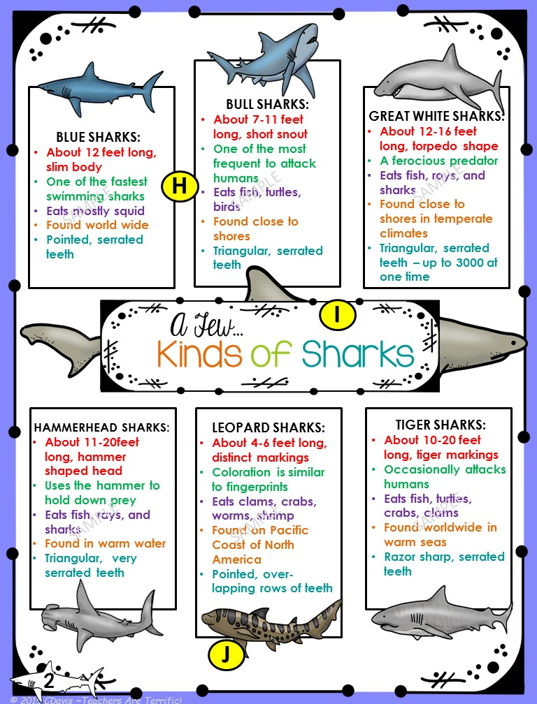 Using Non Fiction Text Features: A poster from a shark task card set!