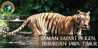 Paket Wisata Surabaya Malang Batu 3 Hari 2 Malam
