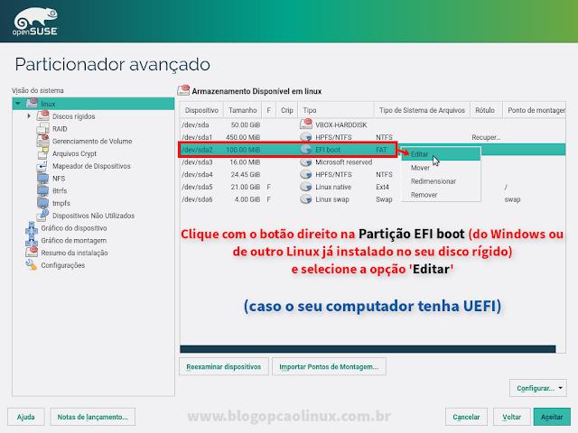 Clique sobre a sua partição EFI boot e SELECIONE A OPÇÃO EDITAR