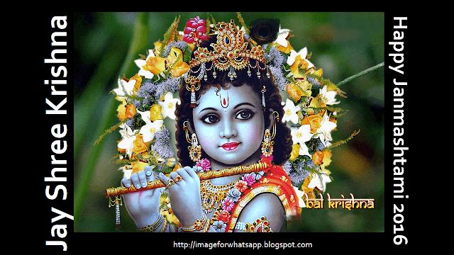 shree krishna images for janmashtami