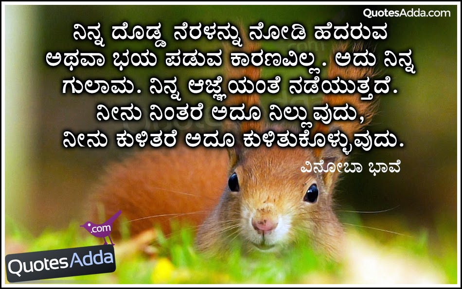 inspiring and motivated proverbs in kannada language