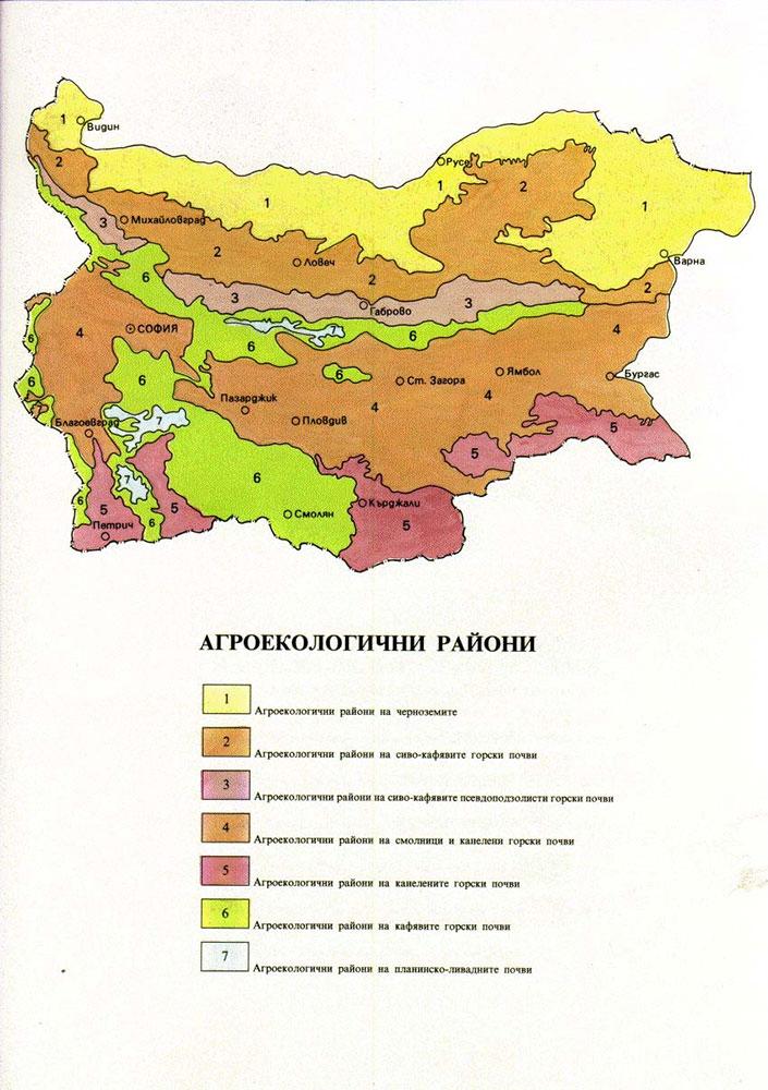 Geografiya Pochvi Rastitelen I Zhivotinski Svyat V Blgariya