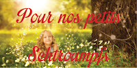 http://passion-d-ecrire.blogspot.fr/2015/06/pour-nos-petits-schtroumpfs-classement.html