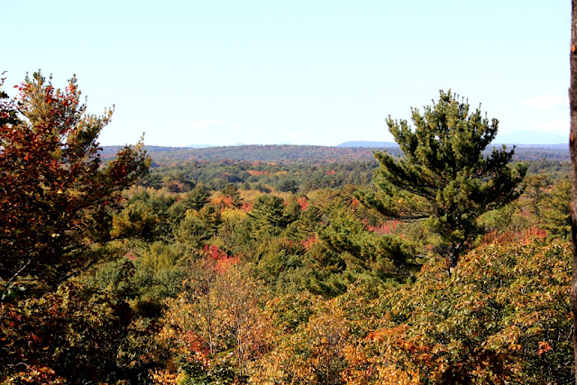 Autumn view from top of Hedgehog Mountain