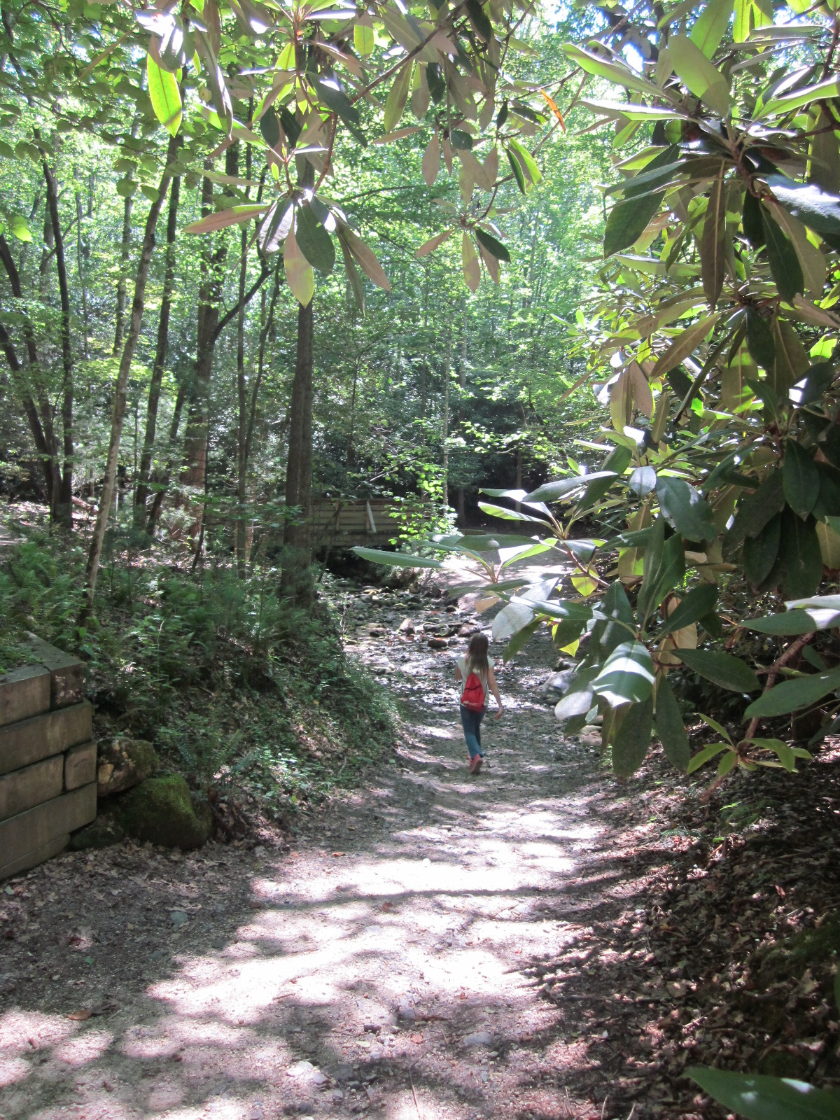 Travel Nc With Kids Stone Mountain Loop Trail At Stone Mountain