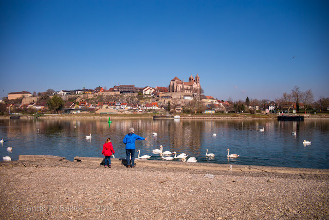 Breisach am Rhein & l'île du Rhin… lieux de villégiature
