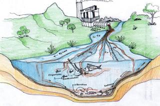 Ciri-ciri Air Tercemar dan Penyebabnya