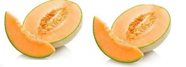Musk Melon Seeds meaning in English, hindi, telugu,tamil,marathi,Gujrathi,Malayalam,Kannada
