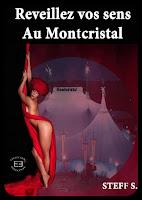 http://www.evidence-boutique.com/indecente/12-reveillez-vos-sens-au-montcristal-9791034800025.html