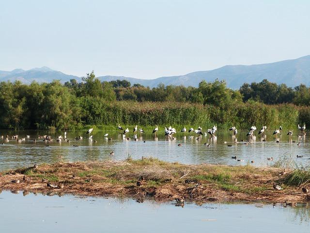 Reserva natural Bulgaria