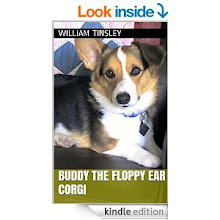 Buddy The Floppy Ear Corgi