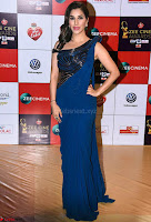 Sophie Choudhryin Blue Designer Saree  Walk the Red Carpet of Zee Awards 2017i ~  Exclusive Galleries 021.jpg